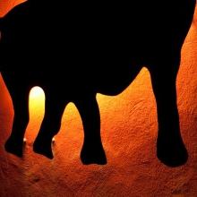 2009-10-16_uetzel_am_12_650